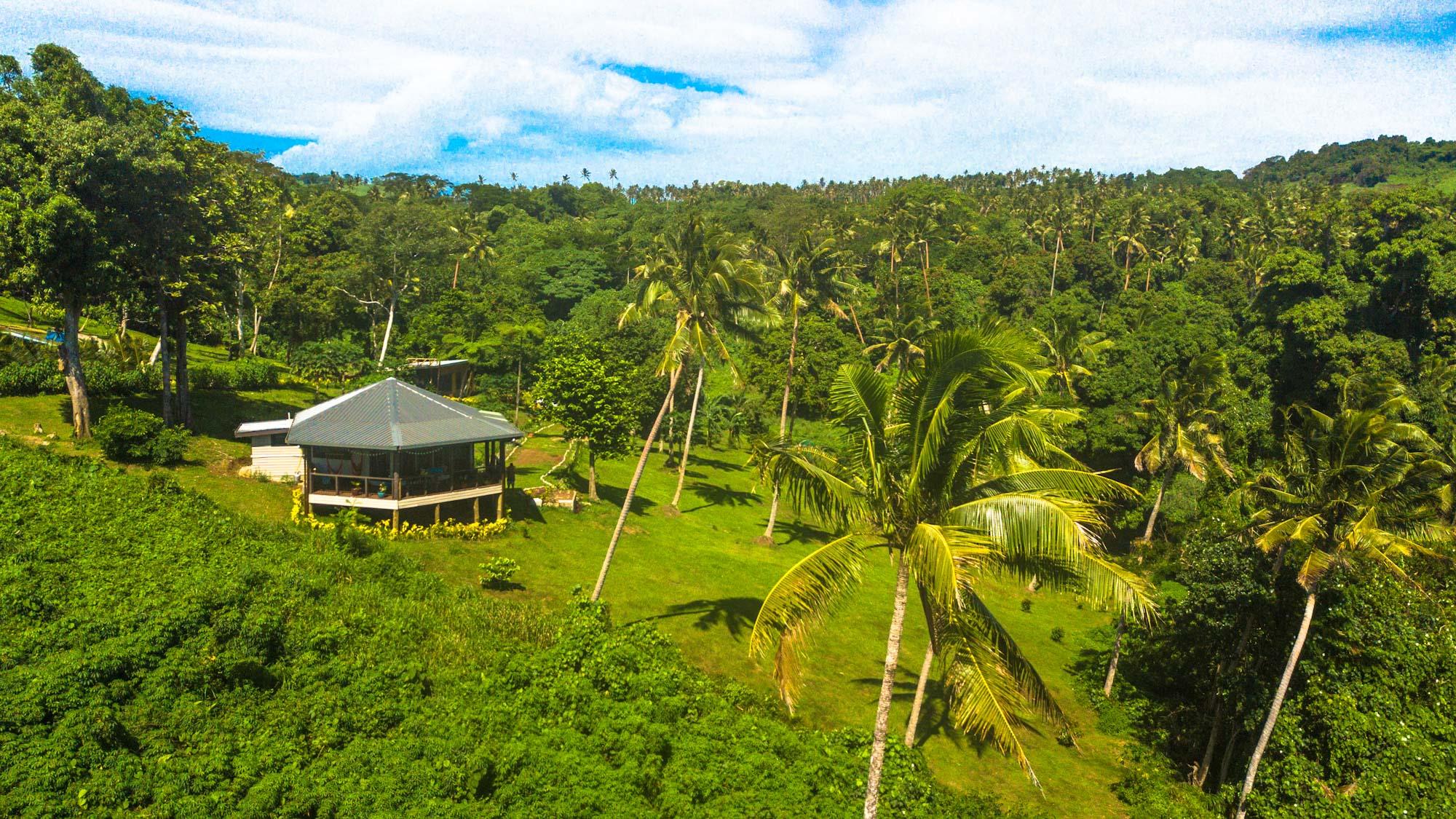 Explore the Fijian Jungle